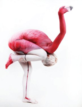 The_Human_Flamingo